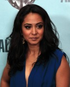"Parminder Nagra - ""Alcatraz"" Premiere Party in San Francisco on January 11, 2012 - x2 HQ"