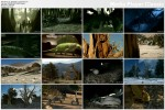 Wêdrówki z potworami / Before the Dinosaurs (2006) PL.TVRip.XviD / Lektor PL