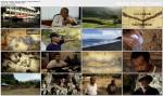 Cz³owiek z Flores albo opowie¶æ o ostatnich hobbitach / L'homme de Flores ou Le conte des derniers Hobbits (2011)  PL.TVRip.XviD / Lektor PL